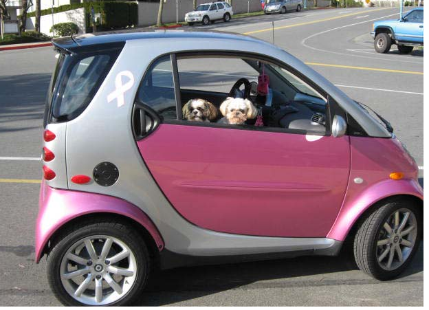 Silver pink smart car pictures.PNG