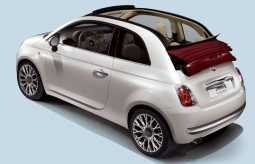 Fiat 500 cars with.PNG