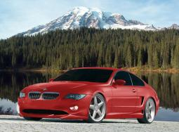 red BMW car with two doors.jpg