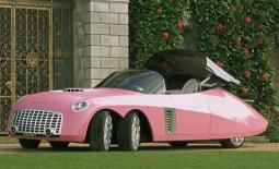 Fab1 in the 2004 Thunderbird in pink.JPG