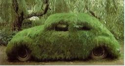 Grass Covered Car picture.JPG